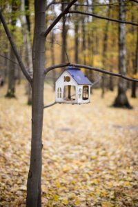 Tiny bird house suspended from bare twig