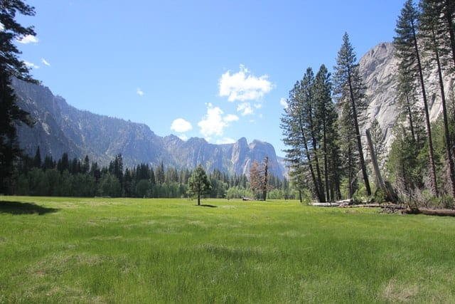 Yosemite Valley meadow and clouds